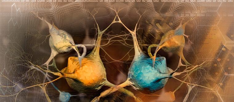 Neuroprotección y terapia celular en la enfermedad Parkinson