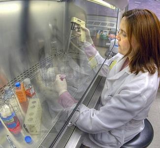 La investigación en el ámbito de la sanidad animal en España